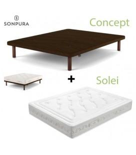SOLEI + CONCEPT